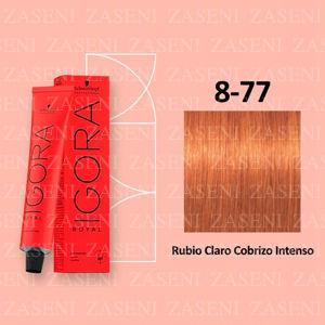 SCHWARZKOPF IGORA ROYAL 8-77 RUBIO CLARO COBRIZO TINTE 60 ML